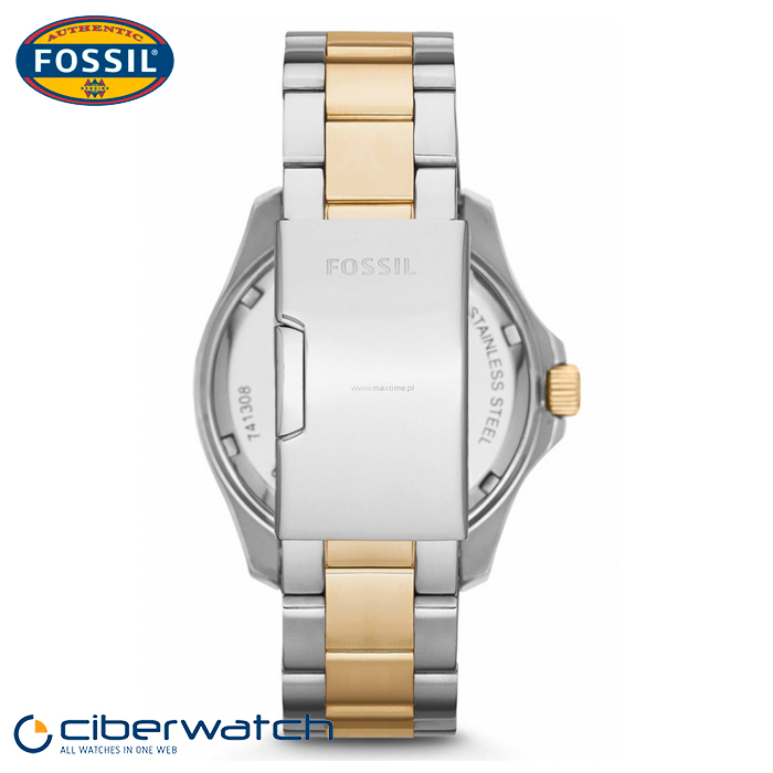 » Relojes Mujer » Reloj Fossil Cecile para Mujer AM4543 Sumergible